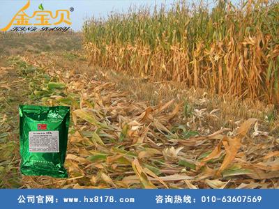 青贮饲料发酵剂